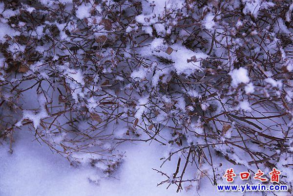 老街冬雪 2