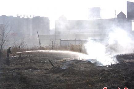 营东新城一片荒地突然着火冒浓烟