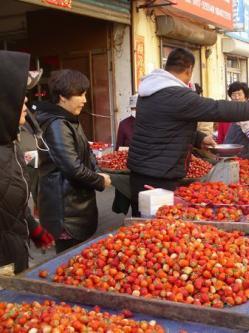 营口草莓初现销售高潮