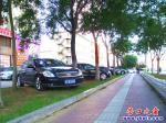 营口市:一排轿车把草坪当成停车场