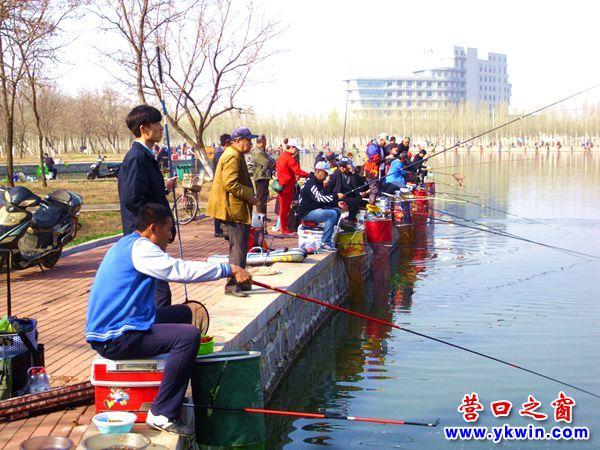 营口市森林公园:钓鱼的朋友来相会