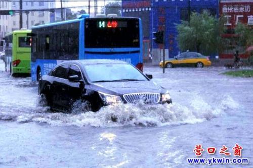 营口大雨倾城 车辆秒变船