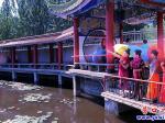 楞严寺睡莲盛开  引游客前来观赏