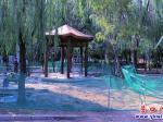 公园增设凉亭  满足游客休息