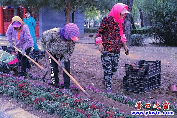 """营口楞严寺公园:鲜花装扮迎""""双节"""""""