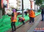 渤海大街绿化带又铺防尘网