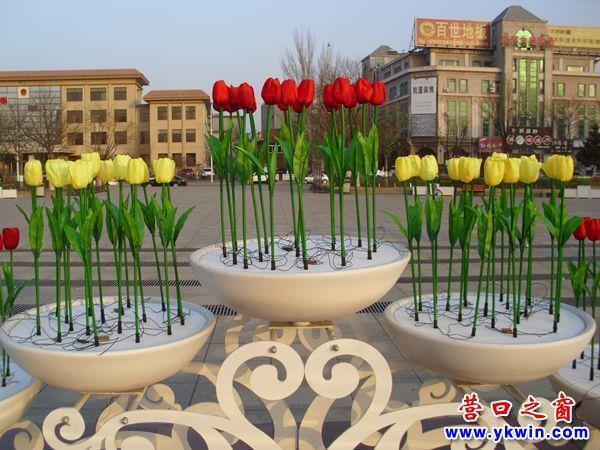 """朵朵鲜艳的""""郁金香花""""环抱辽河广场"""