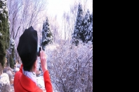 一场春雪   醉美了楞严寺公园