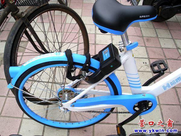 共享单车变成独享单车