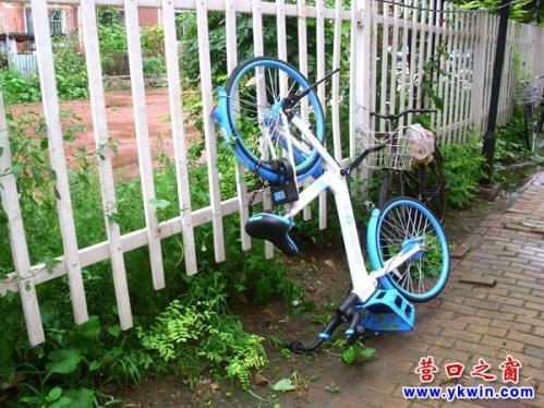 共享單車為何遭到倒綁?