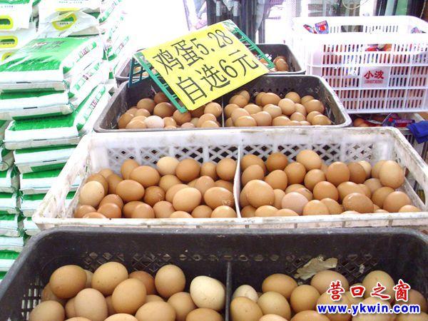 鲜鸡蛋猛涨一元达到5元多