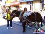 驴吉普进城卖大米 两女孩献橘小毛驴