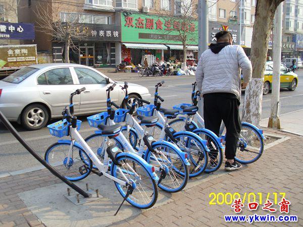失联数月的共享单车哈啰重返营口市区