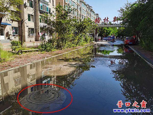 格林新居小区:坍塌的污水井已修好