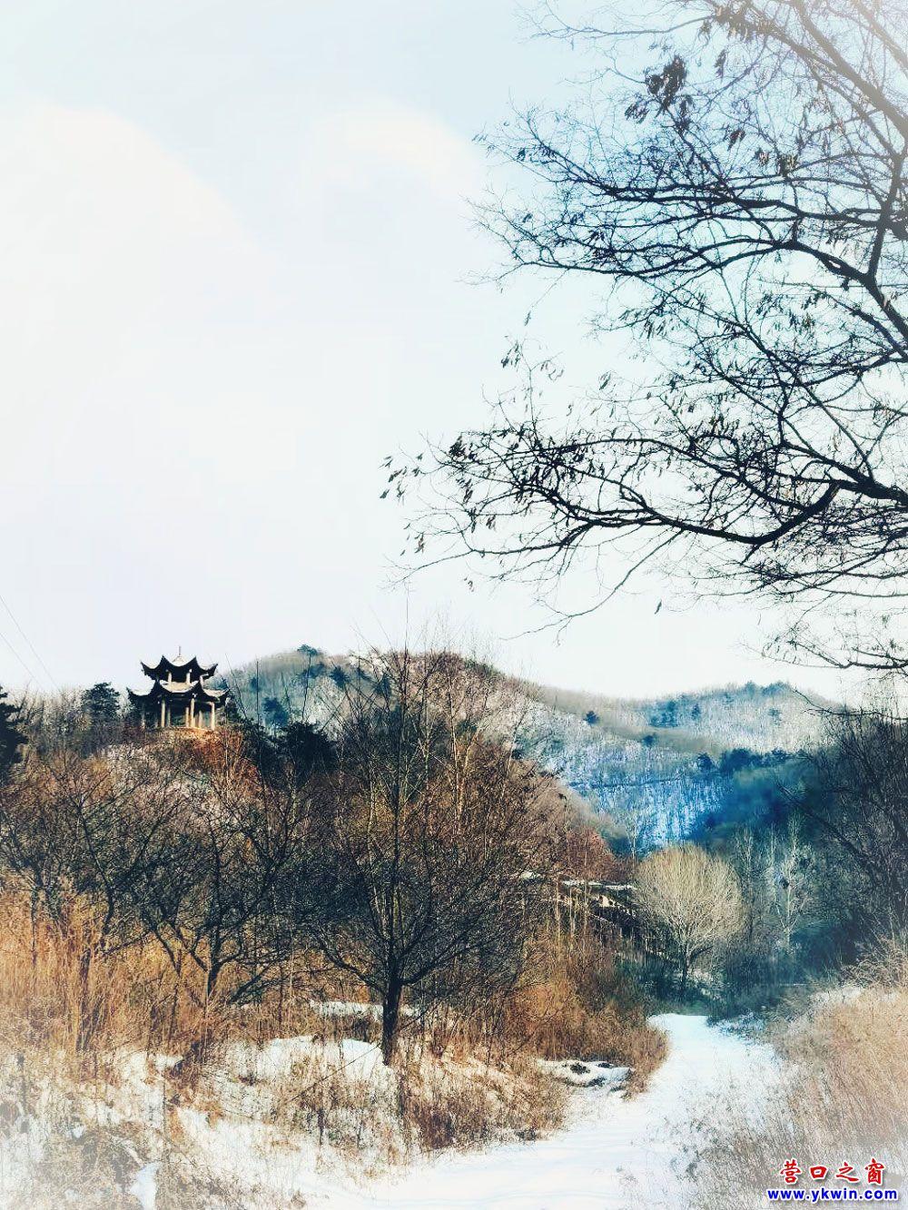 黄土岭镇虎皮峪村