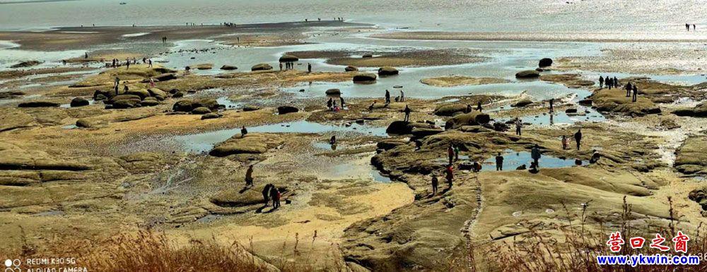 盖州市北海海蚀地貌