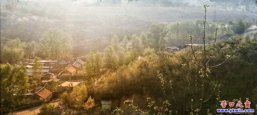 大石桥市东苇子峪村