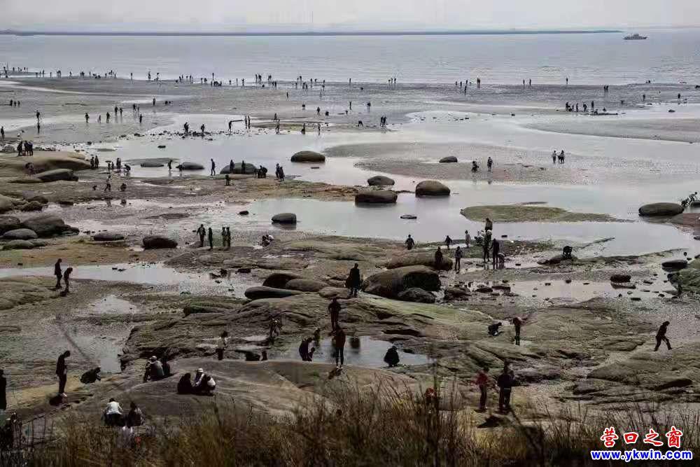 盖州市北海蚀地貌