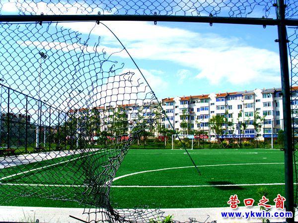 报修:营口市辽河公园足球场出现漏洞