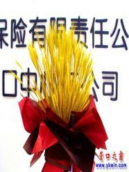 营口市:盆栽麦穗登上大雅之堂